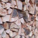 5. Türchen: Holzvorräte